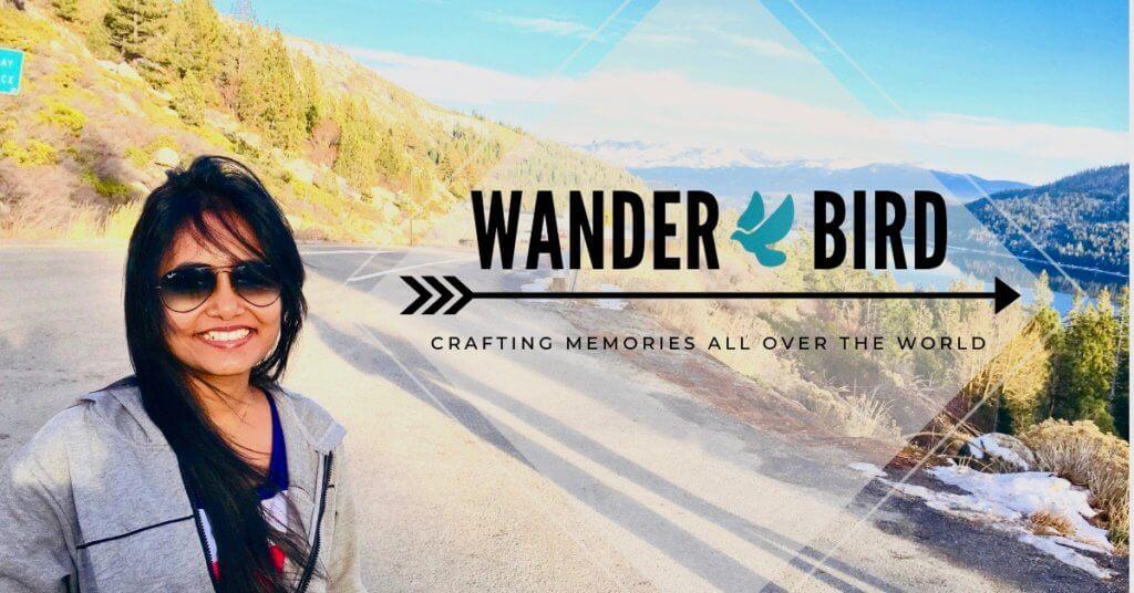 Wander Bird - © Santwona Patnaik